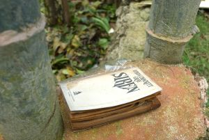 A book belonging to our neighbor, lands in her garden.