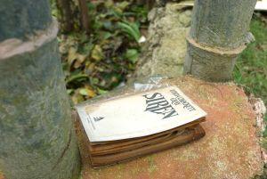 A book belonging to our neighbor, lands in her garden.